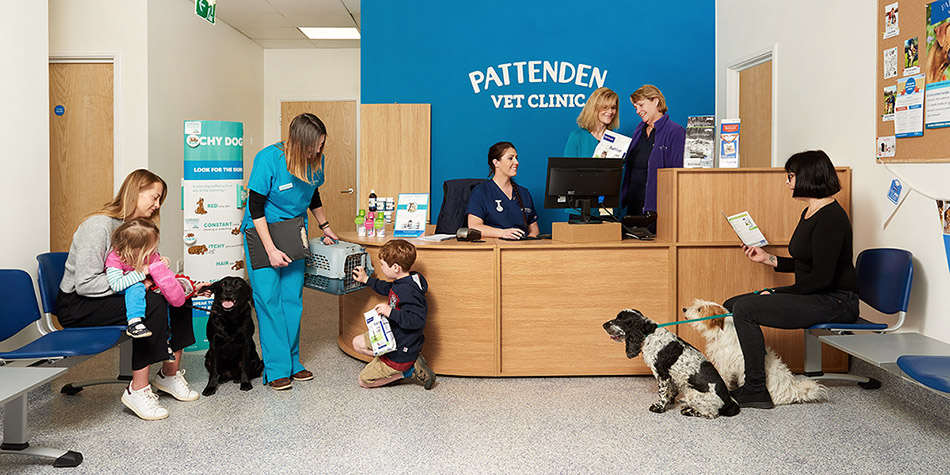 The busy reception at Pattenden Vets. Kent's newest independent veterinary practice.