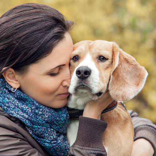 A woman cuddling her sick dog at Pattenden Vets. Pattenden Vets are a small independent veterinary practice in Marden, Kent.
